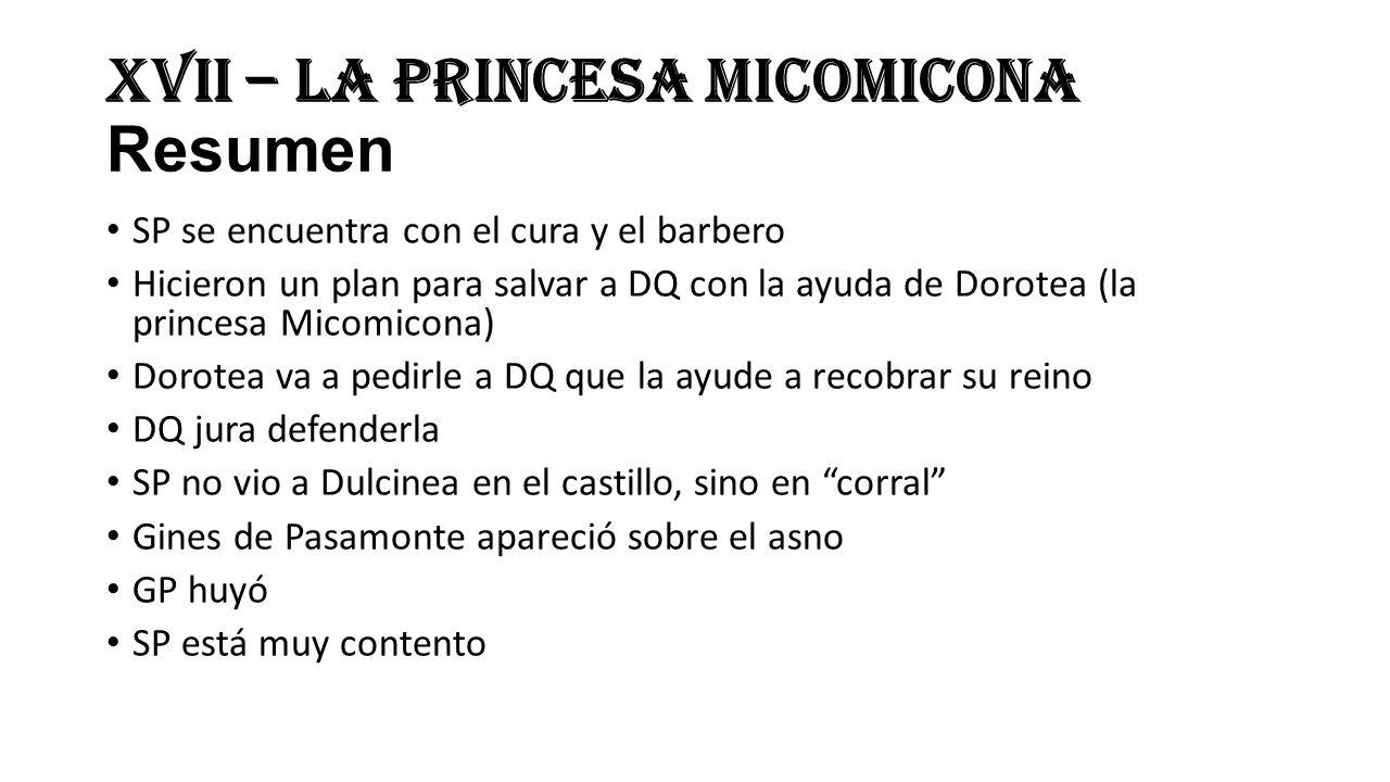XVII – La princesa Micomicona Resumen