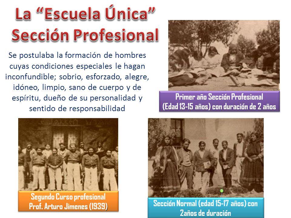 La Escuela Única Sección Profesional
