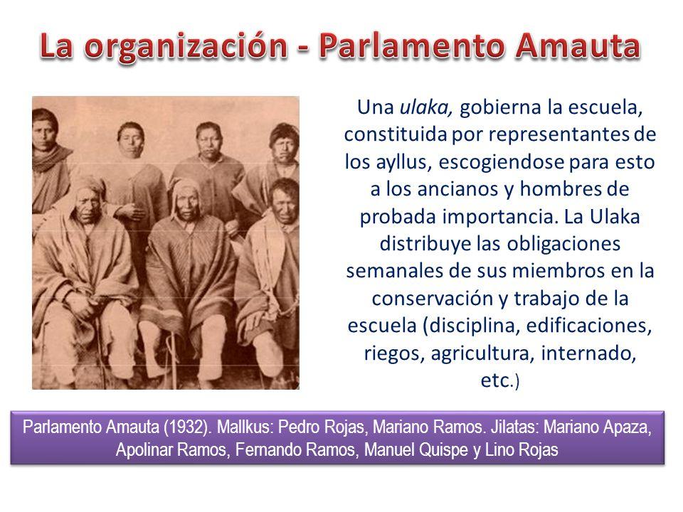 La organización - Parlamento Amauta