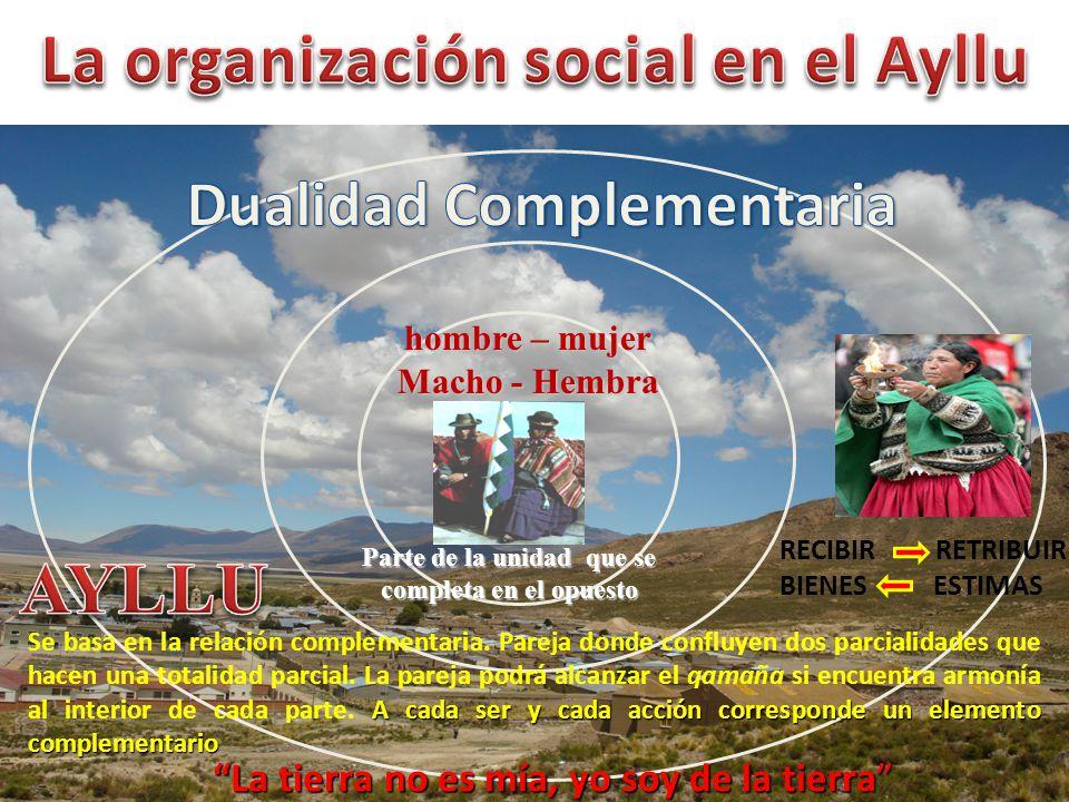 La organización social en el Ayllu