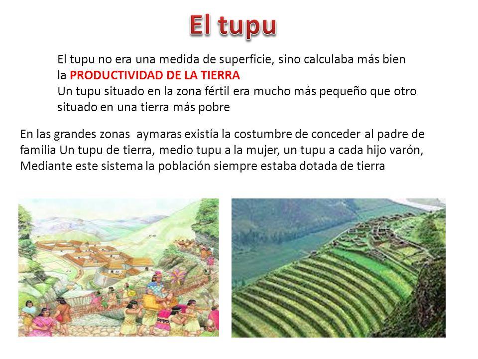El tupu El tupu no era una medida de superficie, sino calculaba más bien la PRODUCTIVIDAD DE LA TIERRA.