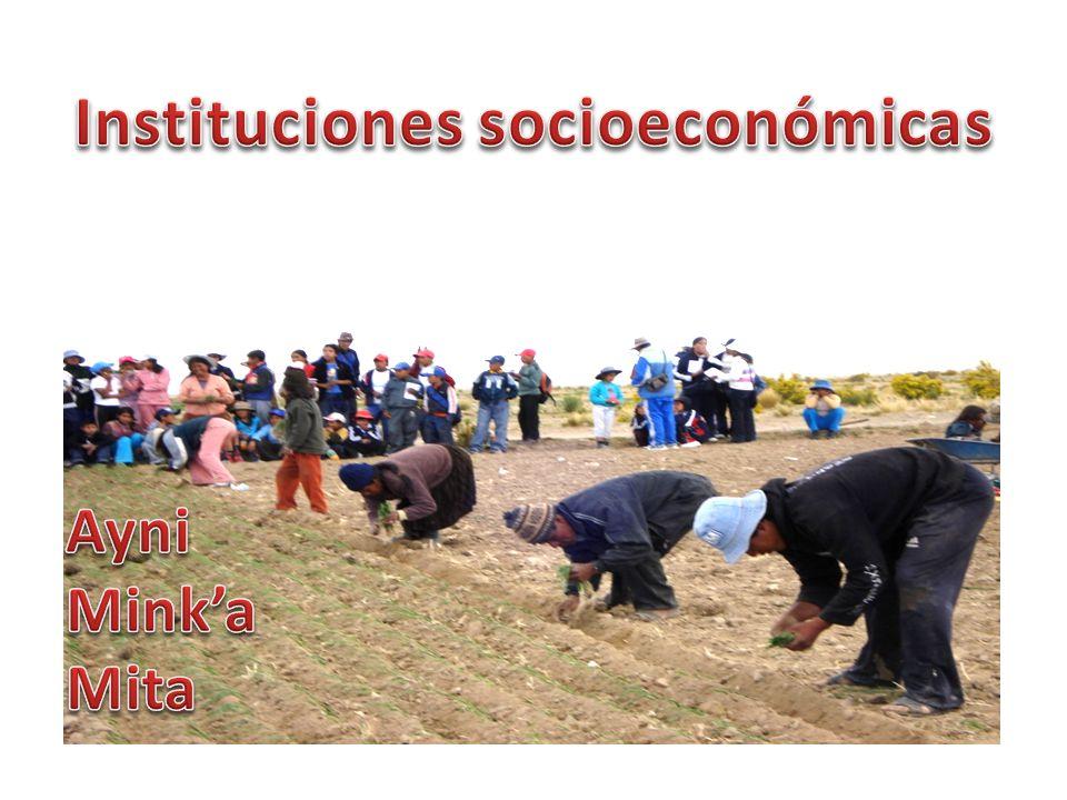 Instituciones socioeconómicas