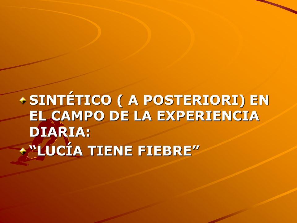 SINTÉTICO ( A POSTERIORI) EN EL CAMPO DE LA EXPERIENCIA DIARIA: