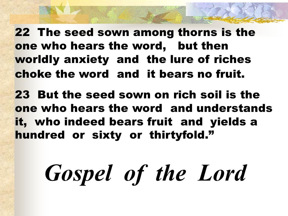 22 The seed sown among thorns is the one who hears the word, but then worldly anxiety and the lure of riches choke the word and it bears no fruit.