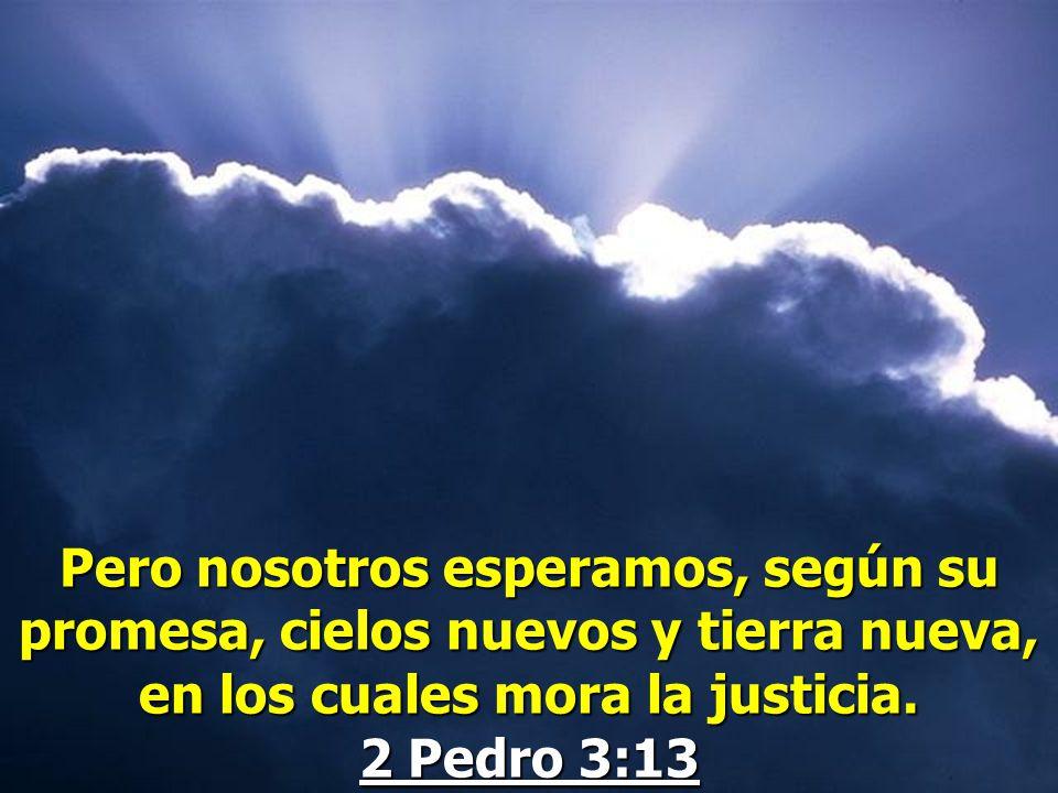 Pero nosotros esperamos, según su promesa, cielos nuevos y tierra nueva, en los cuales mora la justicia.