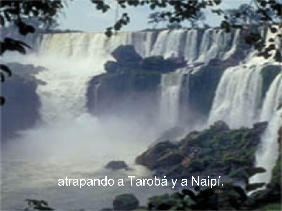 atrapando a Tarobá y a Naipí.