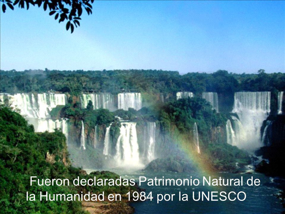 Fueron declaradas Patrimonio Natural de la Humanidad en 1984 por la UNESCO