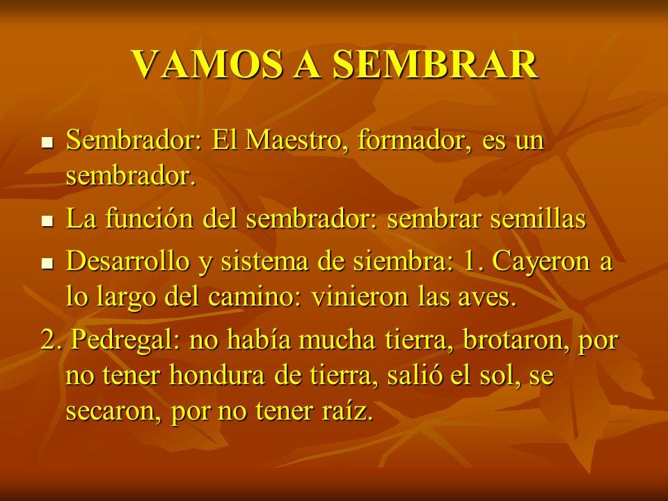 VAMOS A SEMBRAR Sembrador: El Maestro, formador, es un sembrador.