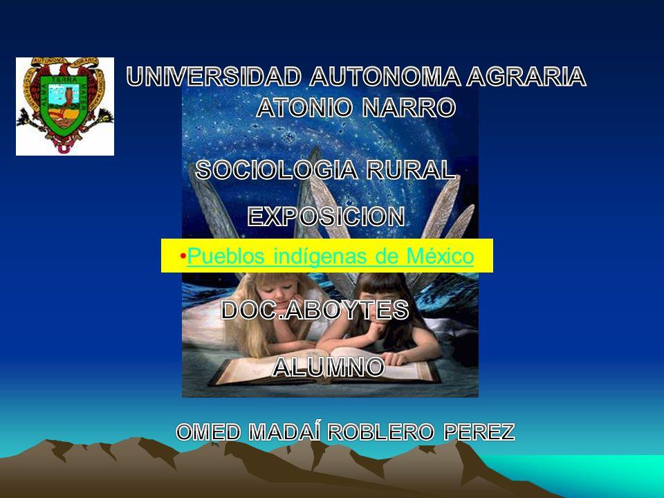 UNIVERSIDAD AUTONOMA AGRARIA OMED MADAÍ ROBLERO PEREZ