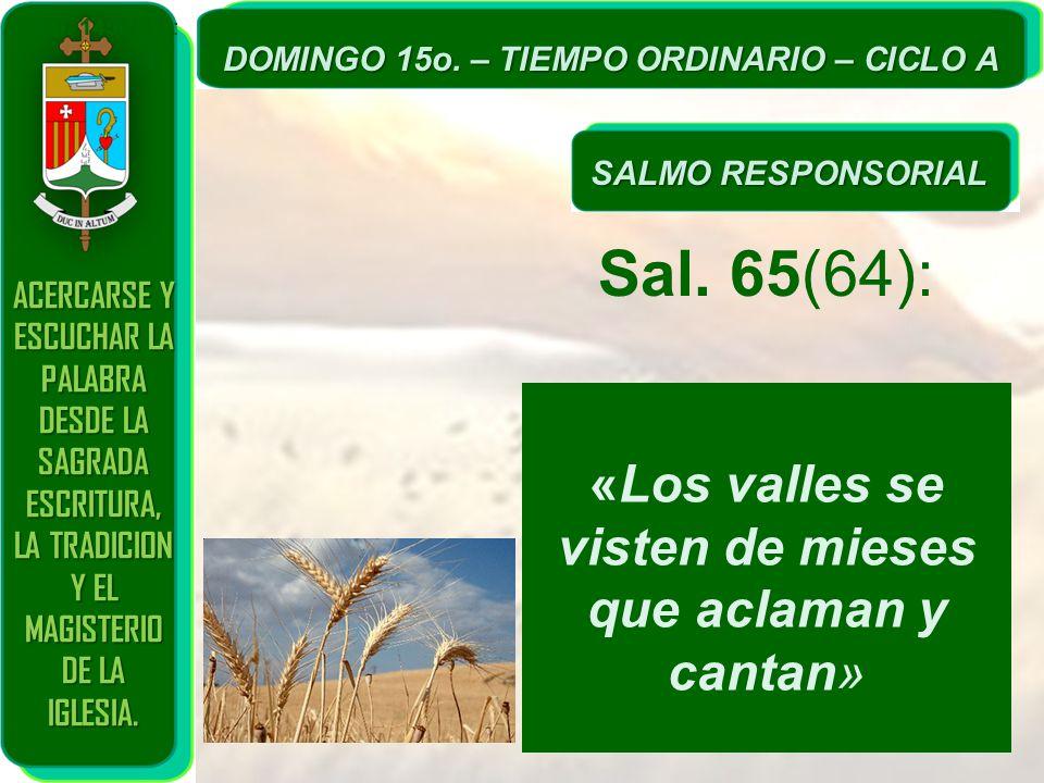 Sal. 65(64): «Los valles se visten de mieses que aclaman y cantan»