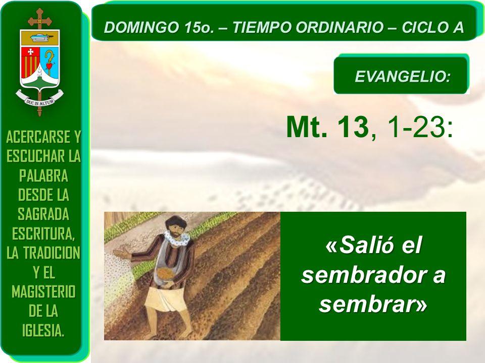 Mt. 13, 1-23: «Salió el sembrador a sembrar»