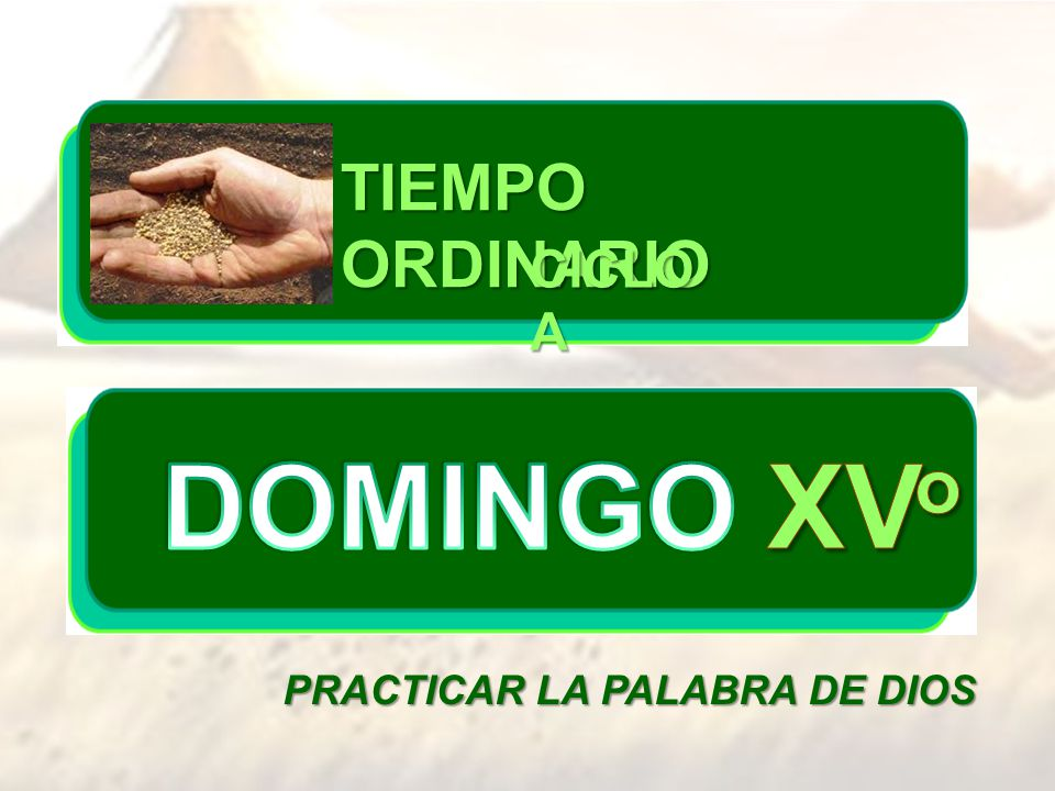 TIEMPO ORDINARIO CICLO A DOMINGO XVo PRACTICAR LA PALABRA DE DIOS