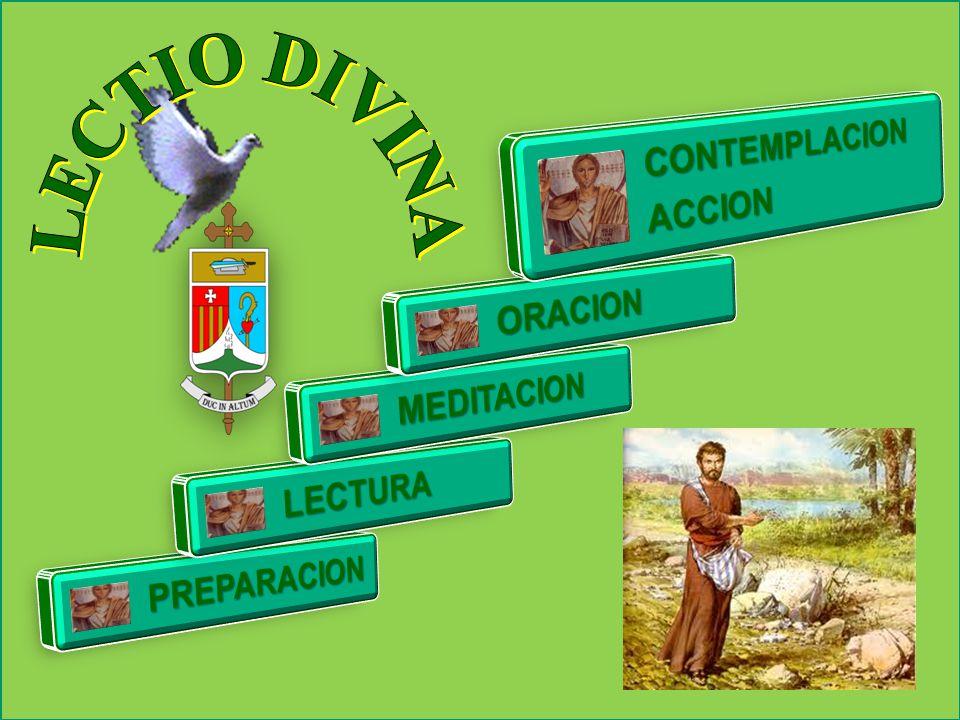 LECTIO DIVINA CONTEMPLACION ACCION ORACION MEDITACION LECTURA