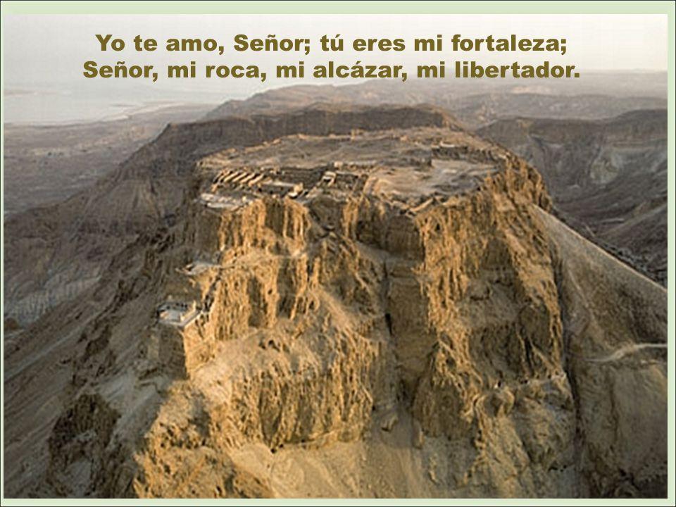 Yo te amo, Señor; tú eres mi fortaleza; Señor, mi roca, mi alcázar, mi libertador.