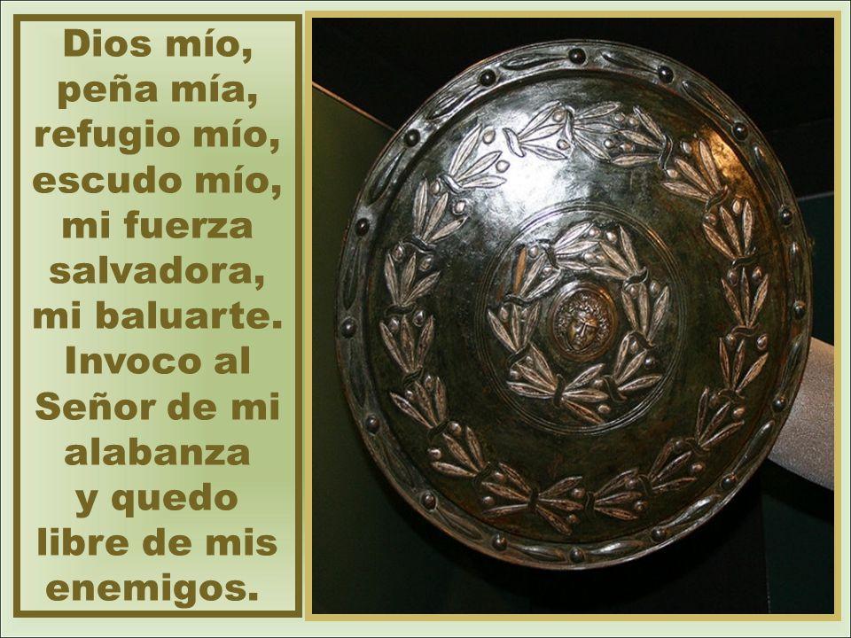 Dios mío, peña mía, refugio mío, escudo mío, mi fuerza salvadora, mi baluarte.