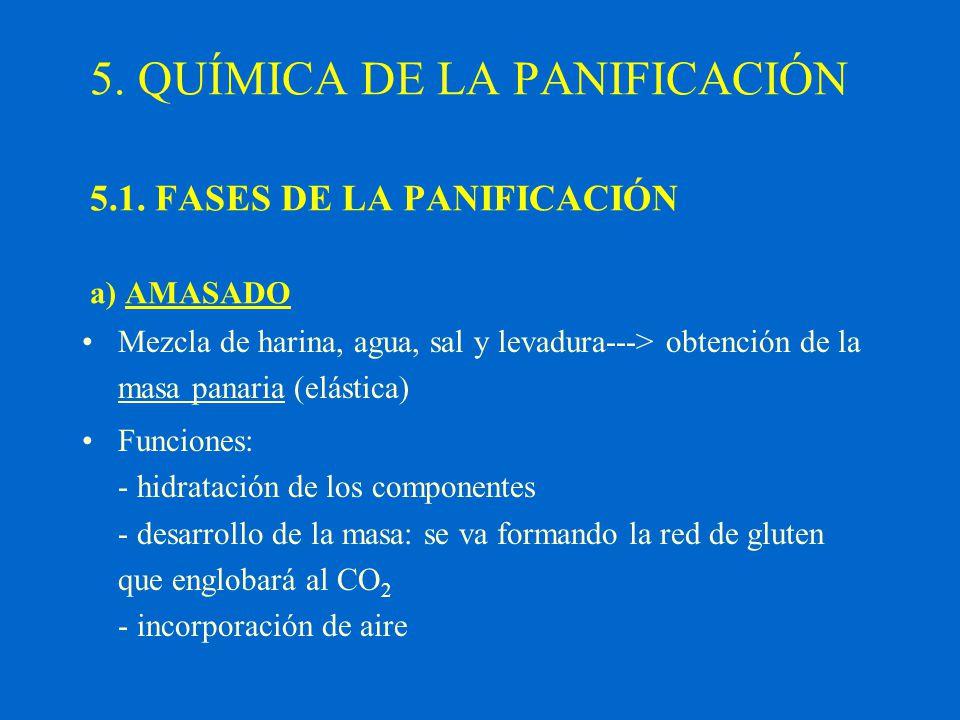 5. QUÍMICA DE LA PANIFICACIÓN 5.1. FASES DE LA PANIFICACIÓN a) AMASADO