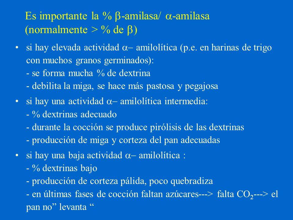 Es importante la % b-amilasa/ a-amilasa (normalmente > % de b)