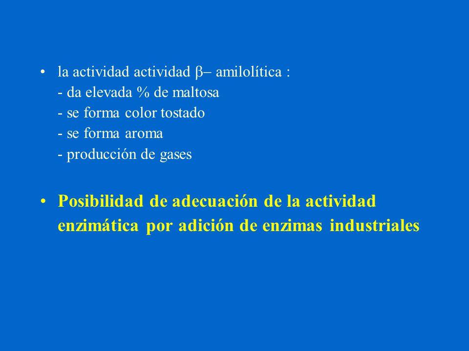 la actividad actividad b- amilolítica : - da elevada % de maltosa - se forma color tostado - se forma aroma - producción de gases