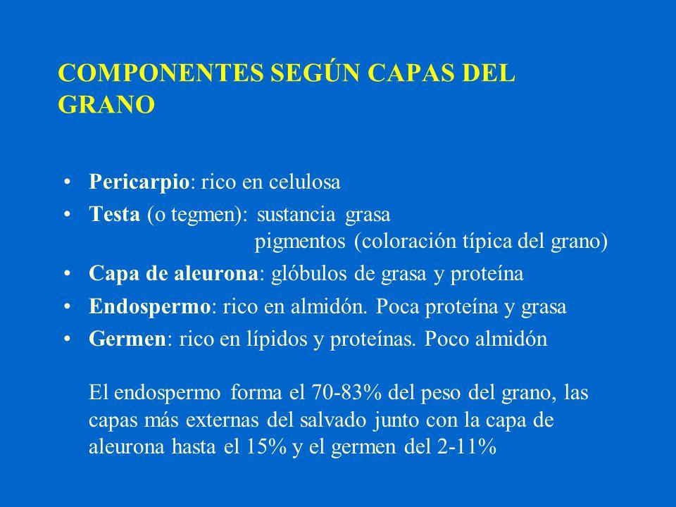 COMPONENTES SEGÚN CAPAS DEL GRANO