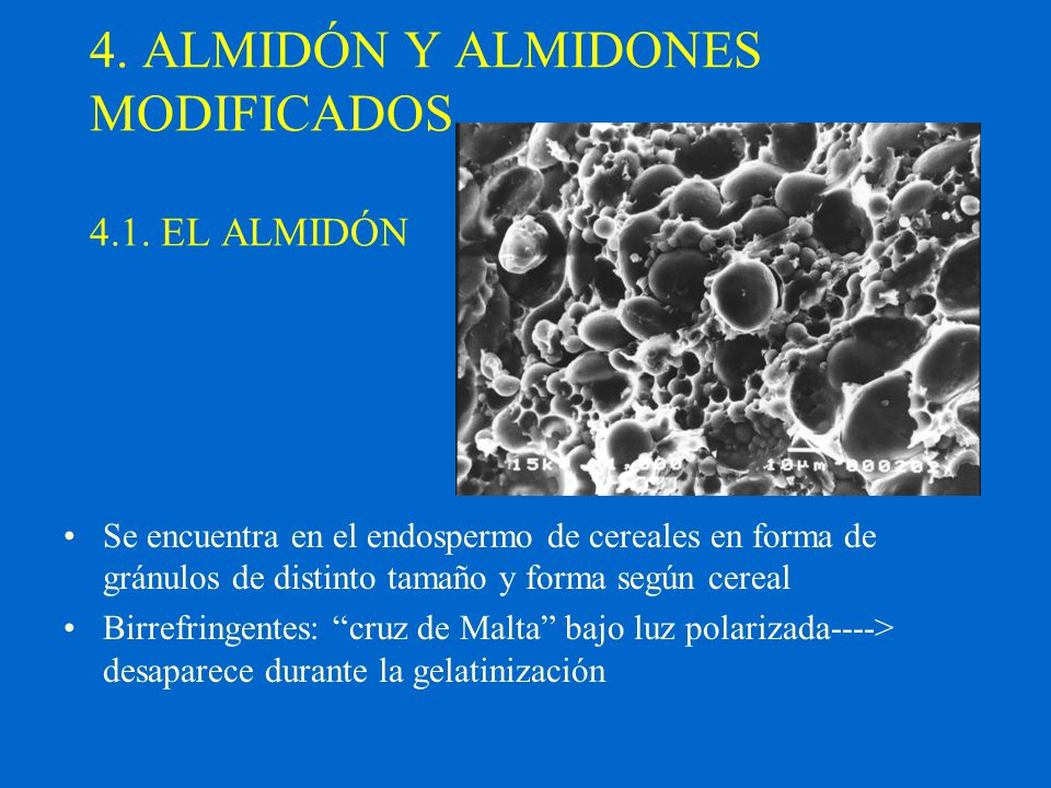 4. ALMIDÓN Y ALMIDONES MODIFICADOS 4.1. EL ALMIDÓN