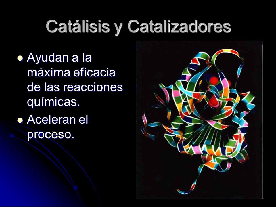 Catálisis y Catalizadores