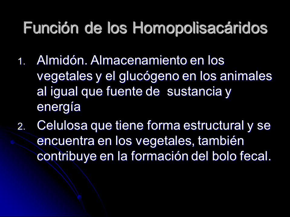 Función de los Homopolisacáridos