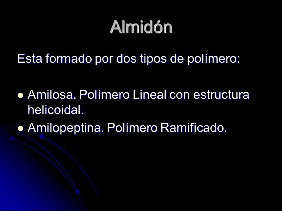 Almidón Esta formado por dos tipos de polímero: