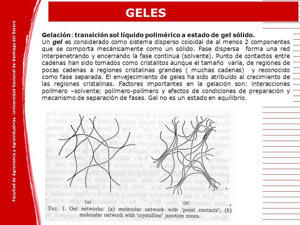 GELES Gelación: transición sol líquido polimérico a estado de gel sólido.
