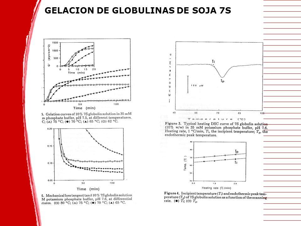 GELACION DE GLOBULINAS DE SOJA 7S