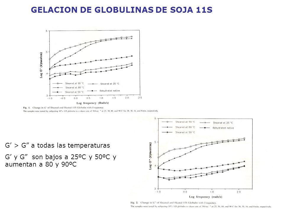 GELACION DE GLOBULINAS DE SOJA 11S