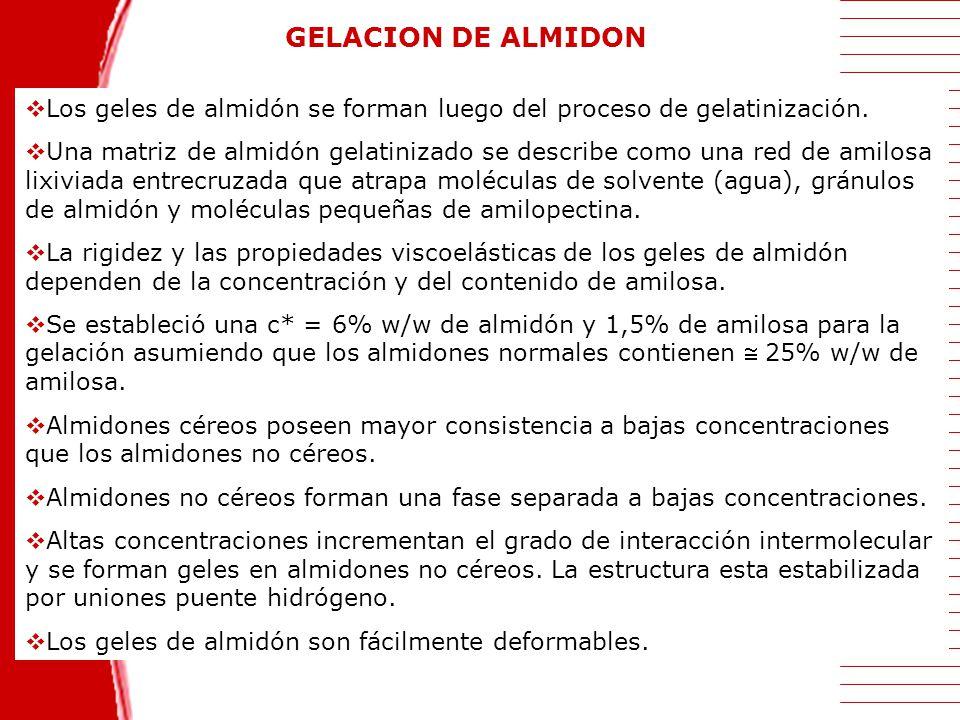 GELACION DE ALMIDON Los geles de almidón se forman luego del proceso de gelatinización.