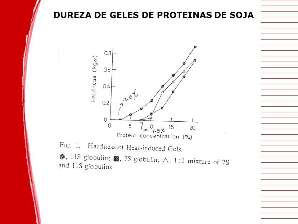 DUREZA DE GELES DE PROTEINAS DE SOJA