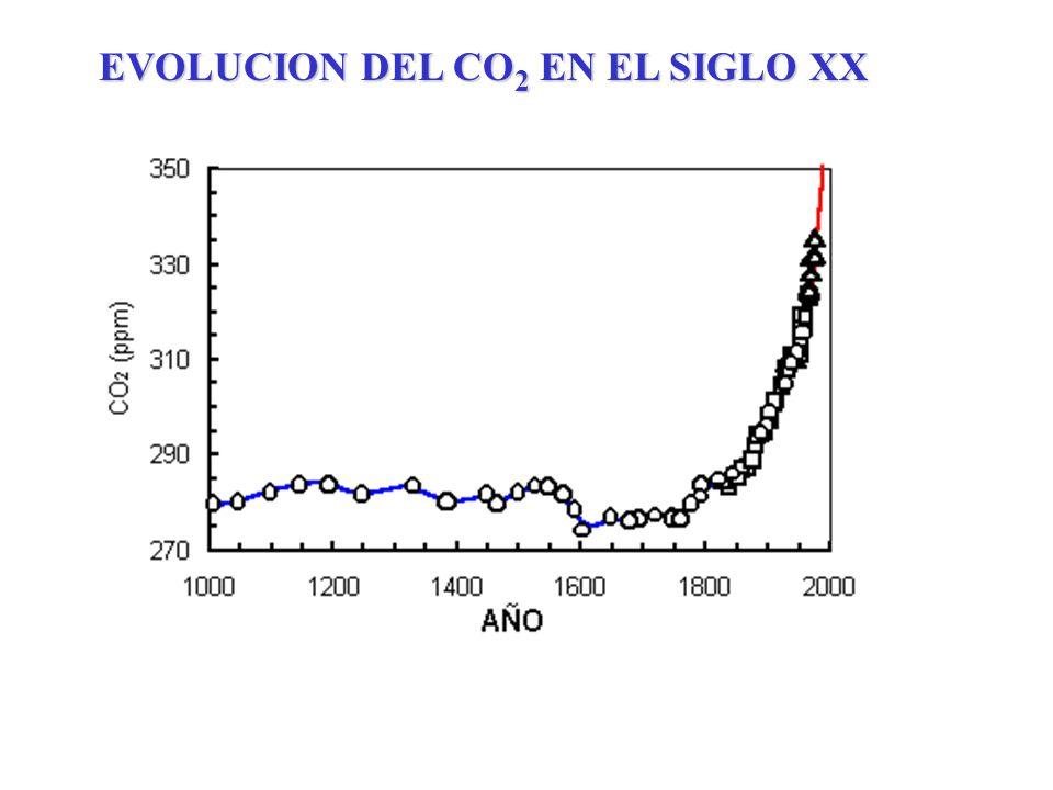 EVOLUCION DEL CO2 EN EL SIGLO XX