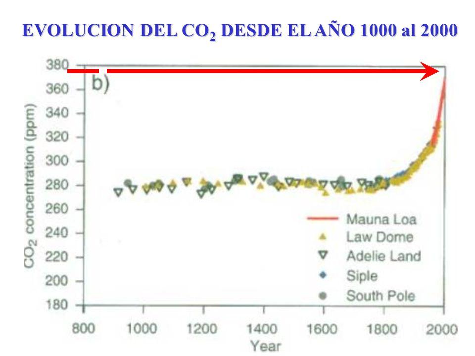 EVOLUCION DEL CO2 DESDE EL AÑO 1000 al 2000