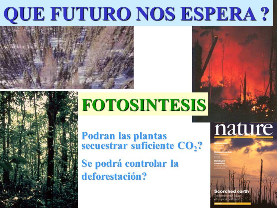 QUE FUTURO NOS ESPERA QUE FUTURO NOS ESPERA