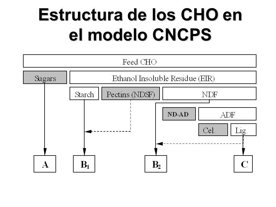 Estructura de los CHO en el modelo CNCPS