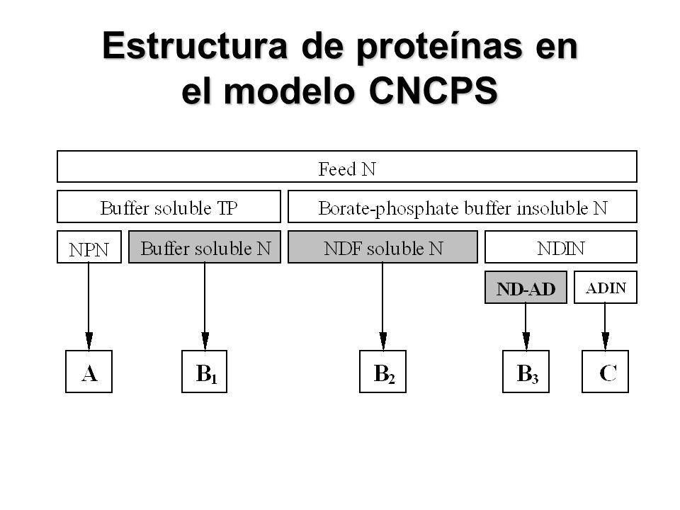 Estructura de proteínas en el modelo CNCPS