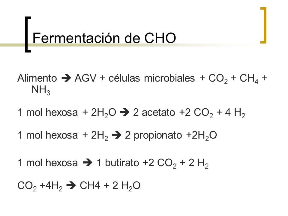 Fermentación de CHO Alimento  AGV + células microbiales + CO2 + CH4 + NH3. 1 mol hexosa + 2H2O  2 acetato +2 CO2 + 4 H2.