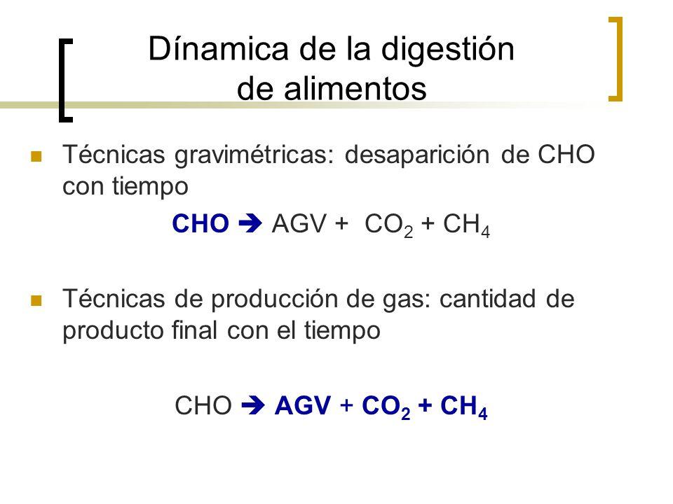 Dínamica de la digestión de alimentos