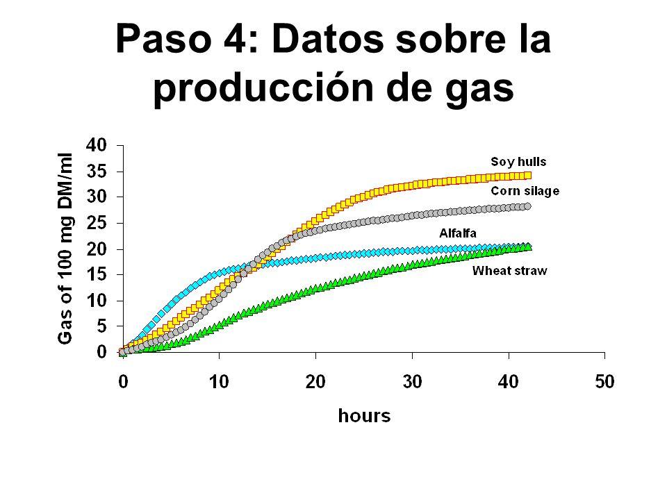 Paso 4: Datos sobre la producción de gas