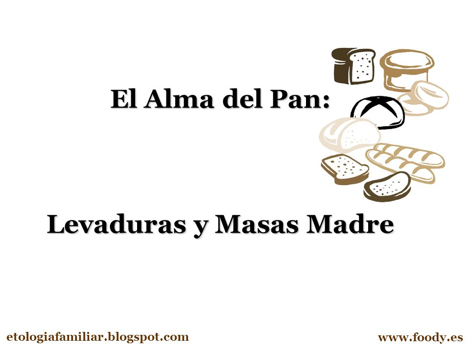 Levaduras y Masas Madre
