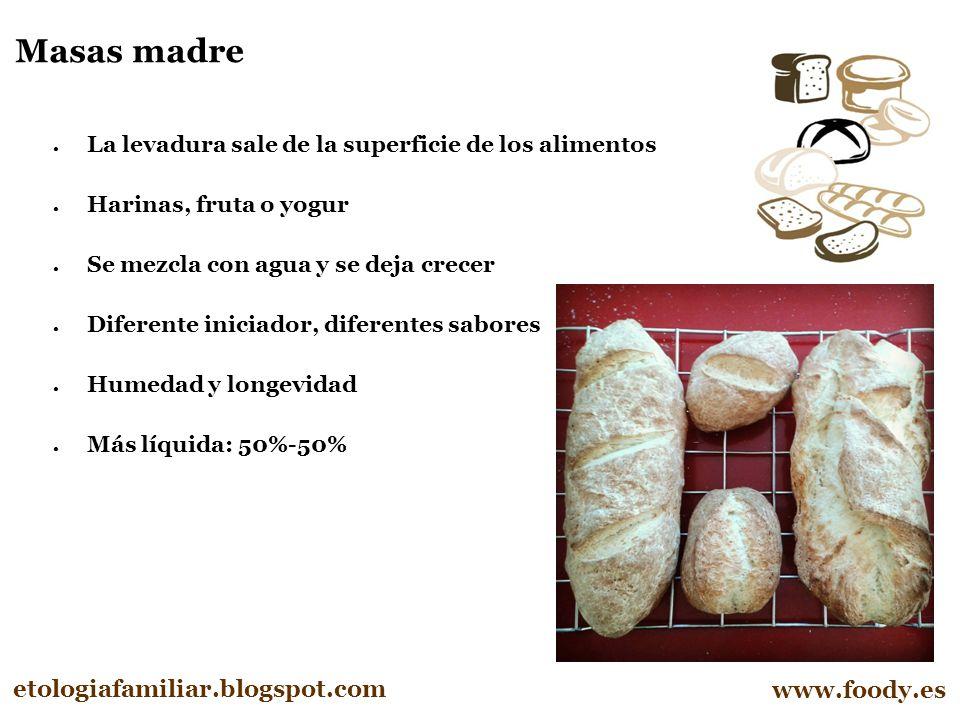 Masas madre etologiafamiliar.blogspot.com www.foody.es