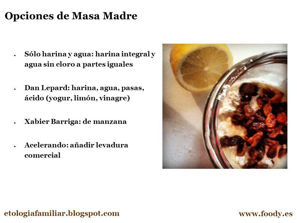 Opciones de Masa Madre etologiafamiliar.blogspot.com www.foody.es