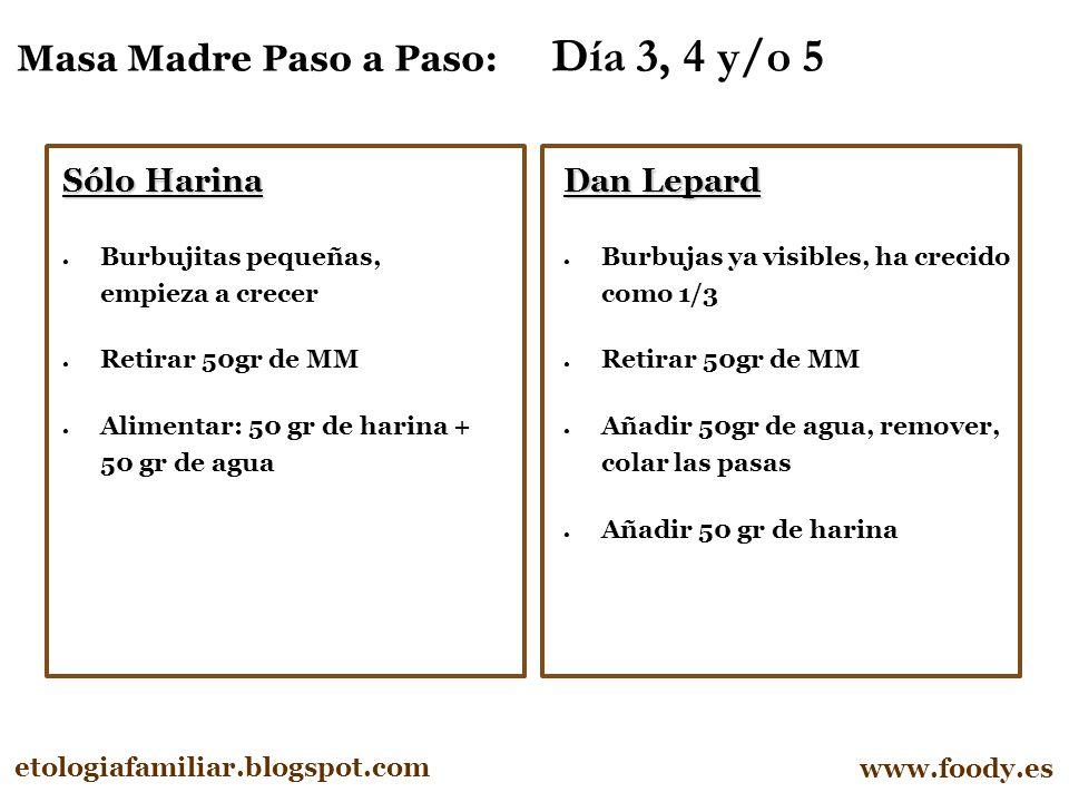 Masa Madre Paso a Paso: Día 3, 4 y/o 5