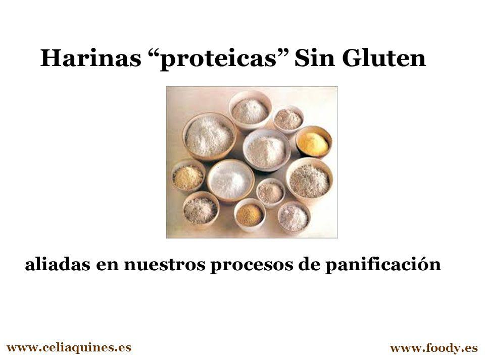 Harinas proteicas Sin Gluten