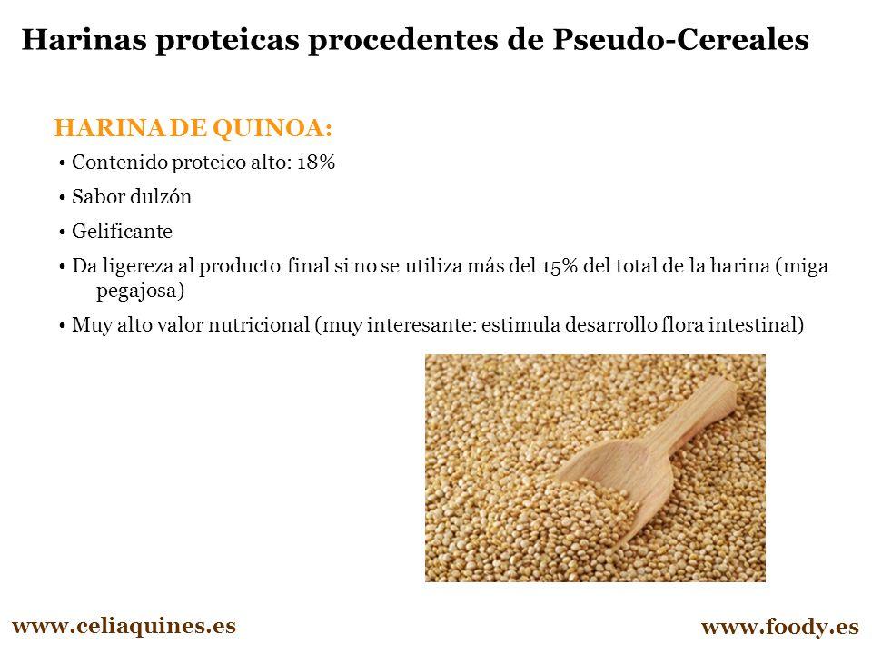 Harinas proteicas procedentes de Pseudo-Cereales