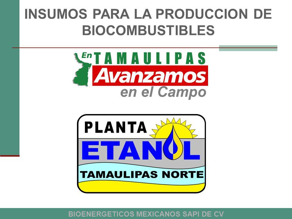 INSUMOS PARA LA PRODUCCION DE BIOCOMBUSTIBLES
