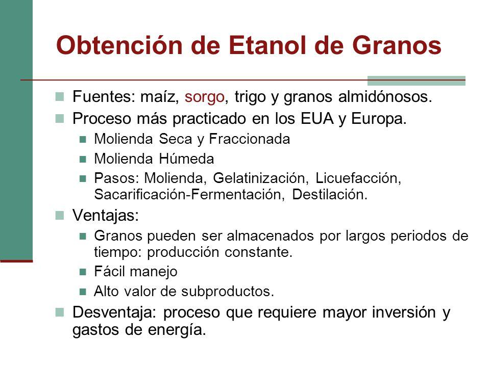 Obtención de Etanol de Granos