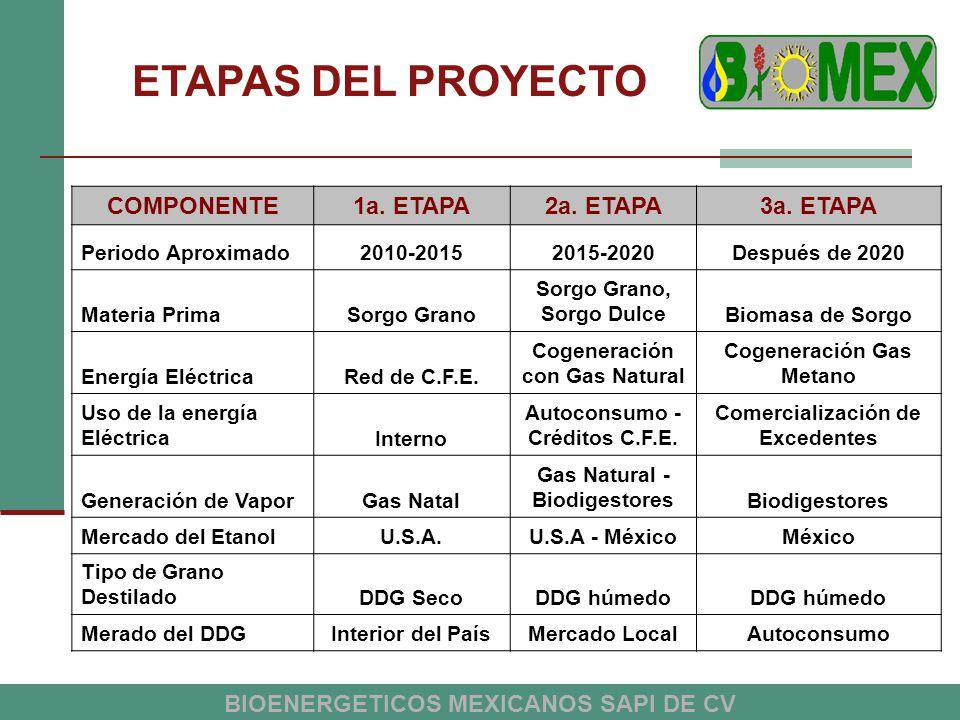 ETAPAS DEL PROYECTO COMPONENTE 1a. ETAPA 2a. ETAPA 3a. ETAPA