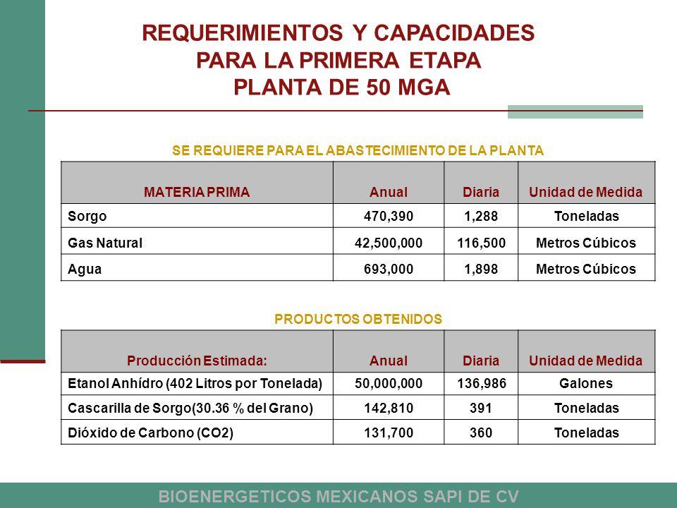 REQUERIMIENTOS Y CAPACIDADES PARA LA PRIMERA ETAPA PLANTA DE 50 MGA
